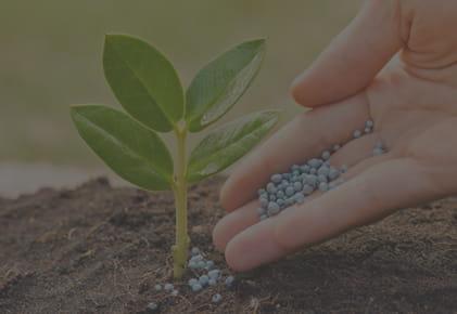RATBET – Środki do produkcji rolnej Pogorzela
